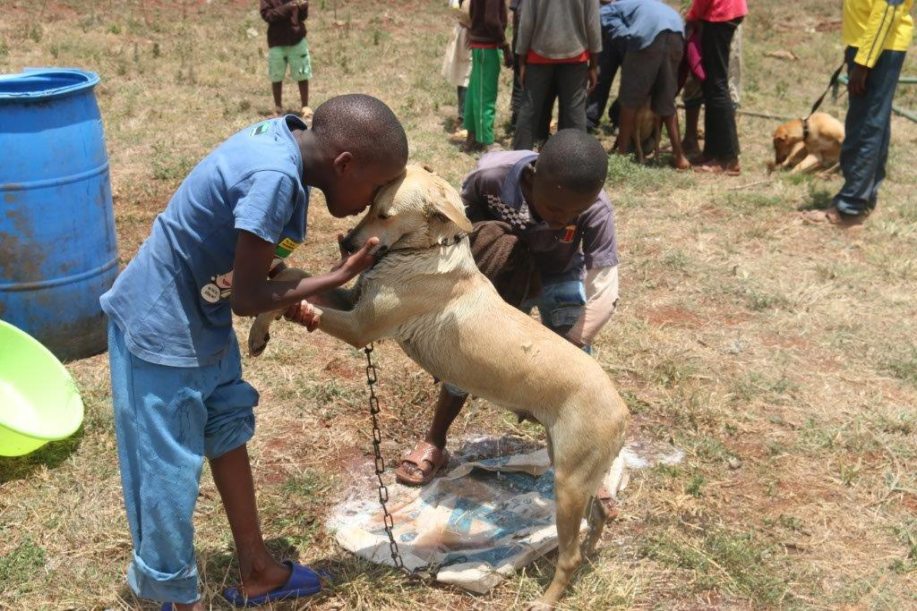 ANAW Celebrates World Animal Day