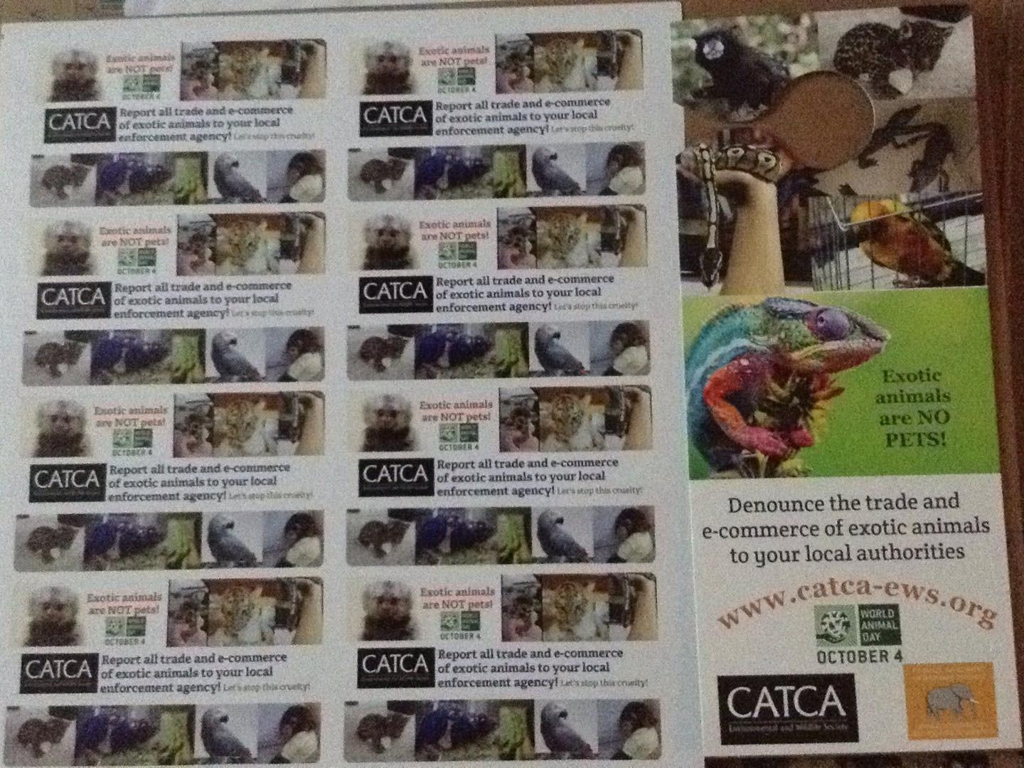 Exotic animals awareness from CATCA Environmental and Wildlife Society
