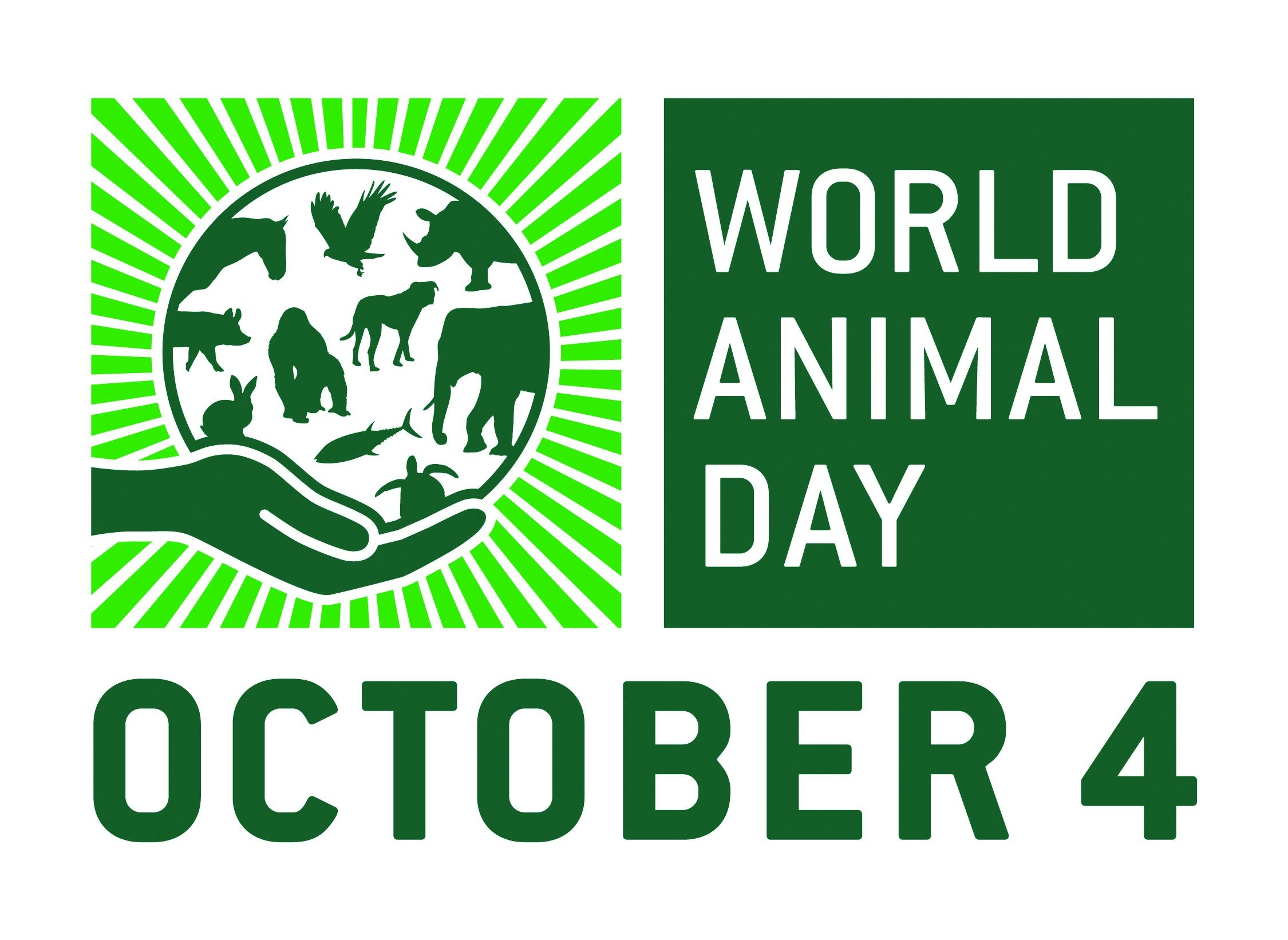World Animal Day 2017 Campaign - Radio Interview