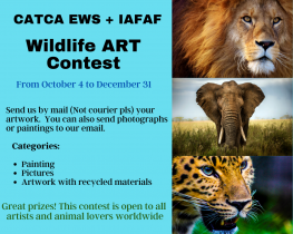 World Animal Day contest