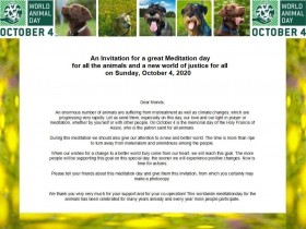 Meditation day for the animals - Meditationstag für die Tiere