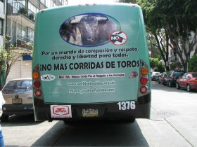 Antibullfighting Bus