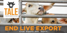 World Animal Day -  It's time to End the Cruel Live Animal Export Trade