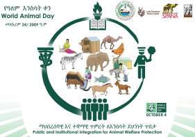 Ethiopia Celebrates World Animal Day