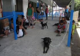 Low cost Spay/Neuter clinic