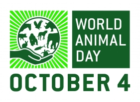 World Animal Day 2019 Palembang