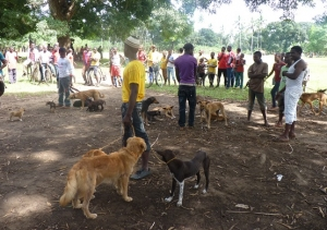 Seventh Zanzibar Rabies Vaccination and Awareness Raising Campaign 2015