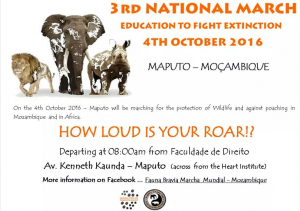 March through Maputo to raise awareness for the plight of the Rhinos and Elephants