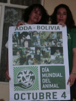ADDA-BOLIVIA defends and rescues animals that suffer throughout the year