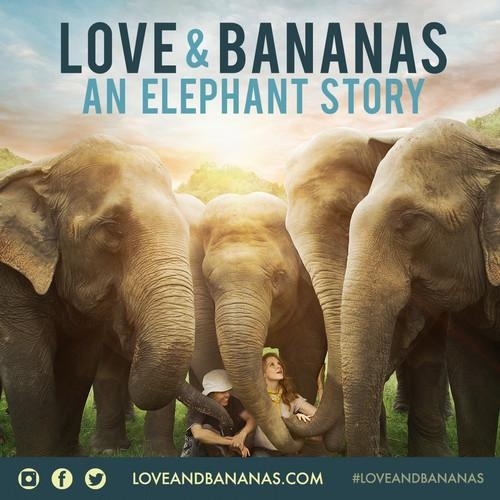 An Evening of Kindness, Love & Bananas