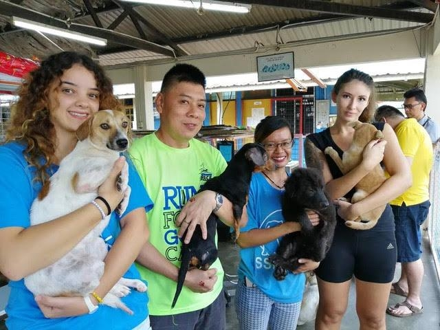 Animal Blessing at the Sarawak SPCA Shelter