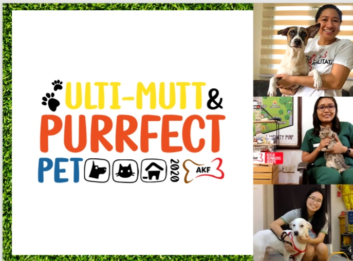 The Search for the Ulti-mutt Adopted Pet 2020