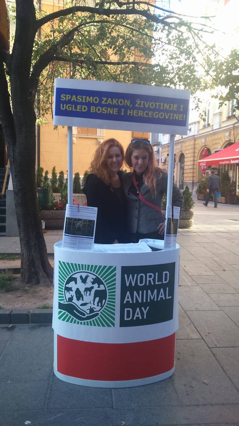 Sarajevo anti-fur World Animal Day