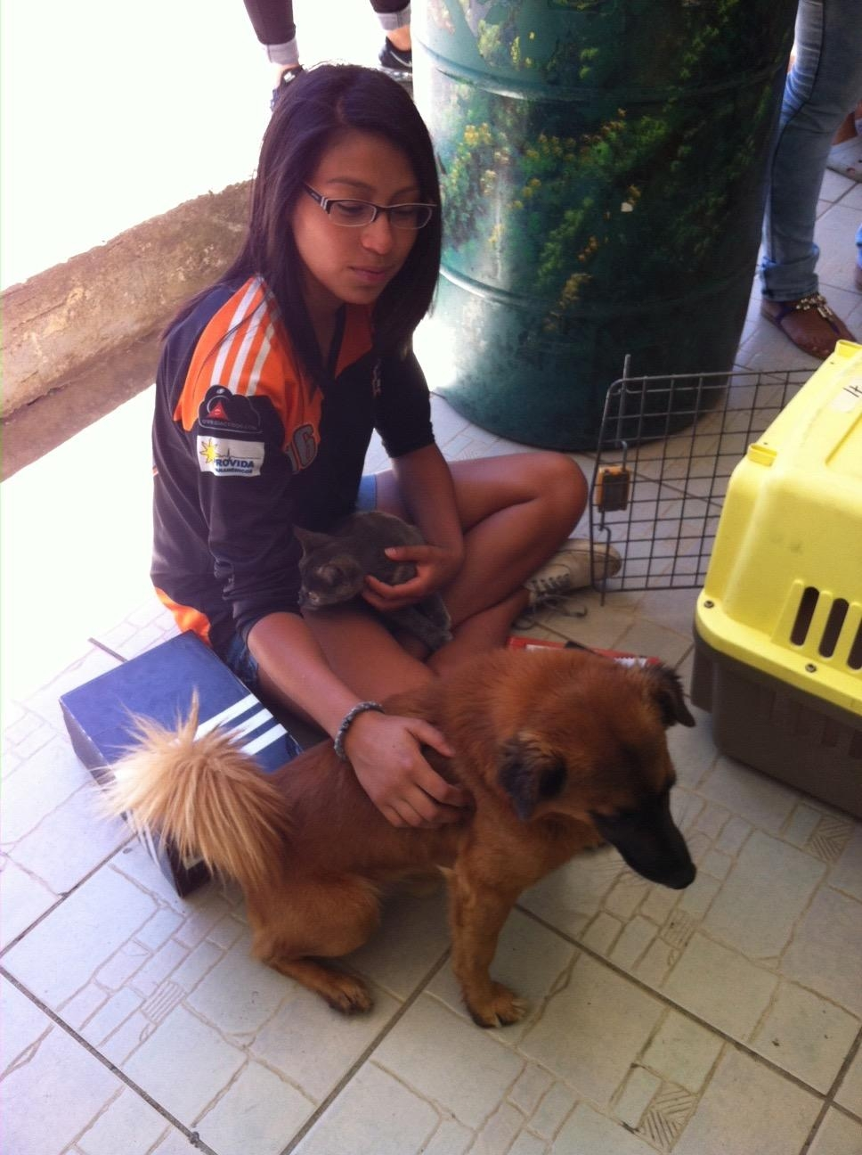 Low cost spay/neuter clinic and awareness education