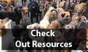 Check out Resources