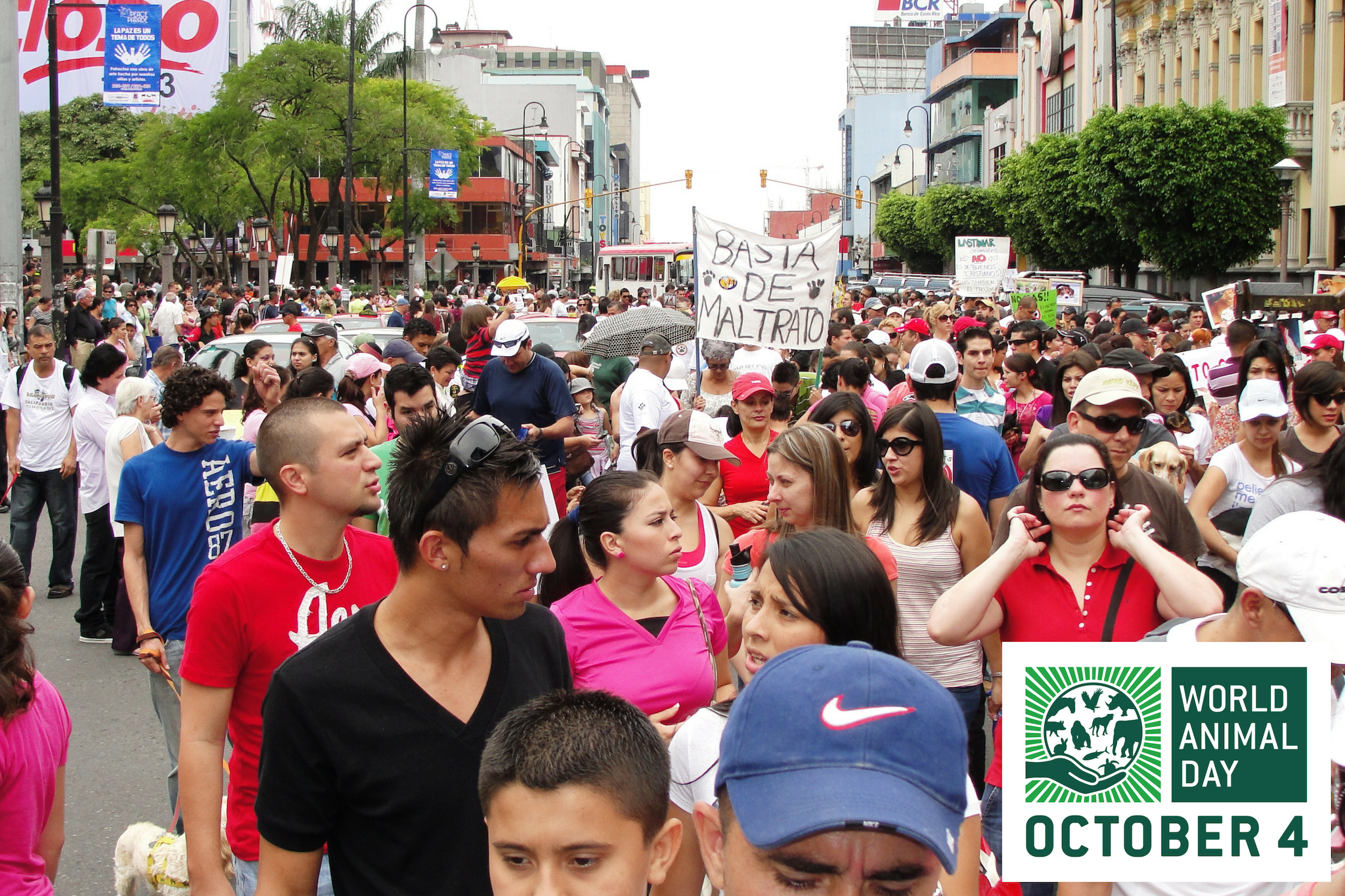 Costa Rica - 9000 March Against Animal Abuse