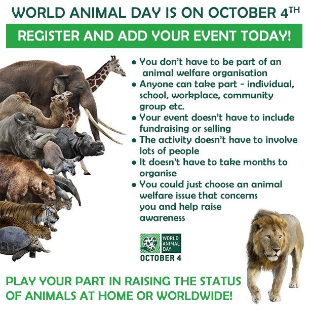 Info - World Animal Day